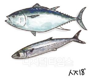 [김연수의 푸드 테라피] 깜박깜박한다면 등푸른 생선